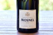 Produttori, un vino al giorno: Franciacorta Brut Satèn 2013 - Il Mosnel