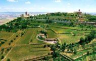Il Brunello di Montalcino dei Tiezzi, un monumento a Riccardo Paccagnini