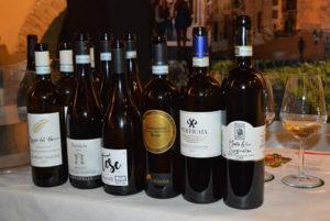 I vini in degustazione con Giampiero Pulcini
