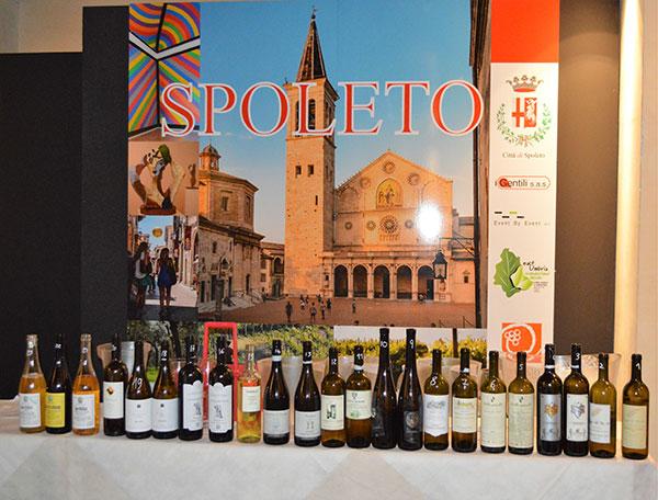 I vini della degustsazione guidata da Jacopo Cossater
