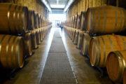 The Grand Wine Tour: nasce la prima certificazione italiana di eccellenza dei servizi enoturistici