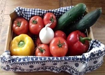 ingredienti per il gazpacho