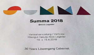 Locandina Summa 2018