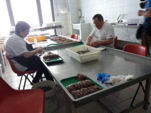 La lavorazione delle alici per i filetti
