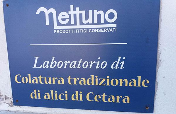 laboratori di colatura Nettuno
