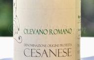 Cesanese di Olevano Romano 2014