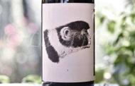 Produttori, un vino al giorno: Romagna Sangiovese Superiore Predappio Godenza 2016 - Noelia Ricci