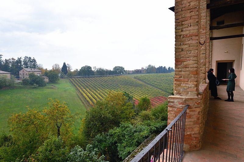 Panorama sui vigneti dalla terrazza del castello