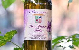 VINerdì Igp, il vino della settimana: Iris Bianco - Tiziano Mazzoni
