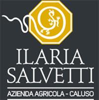 Logo Ilaria Salvetti