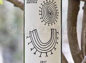 Rosso di Valtellina 2017