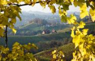 VINerdì Igp, il vino della settimana: Cesanese di Olevano Romano 2015 SanVitis