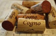 Gli articoli che hanno fatto la storia di Lavinium: Terroir e precisione. I vini di Elvio Cogno