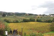 Degustazione IGP a Frascati: quando cerchi un vino (buono) e ne trovi parecchi