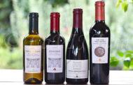 Quattro vini di Lungarotti alla prova del (doppio) calice