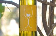 Produttori, un vino al giorno: Vernaccia di San Gimignano Frammenti 2017 - Tenuta Montagnani