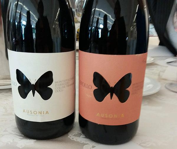 I vini di Ausonia