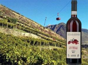 """Valtellina Superiore Grumello """"Rocca De Piro"""" 2015"""