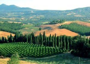 il paesaggio da Montepulciano