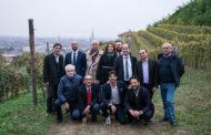 Vigne Urbane: tre nuove città nella Urban Vineyards Association