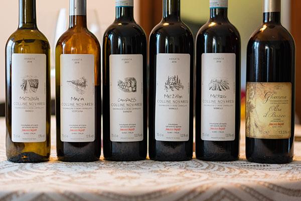 I vini di Francesco Brigatti