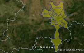 Le DOCG del Piemonte: Gavi o Cortese di Gavi