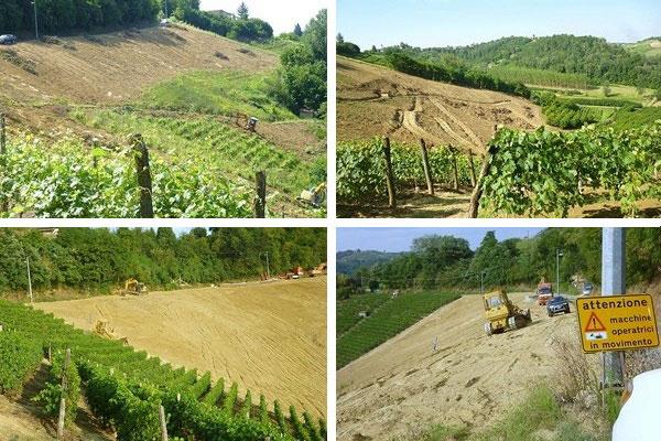 Azienda vinicola Sylla di Mario Sebaste