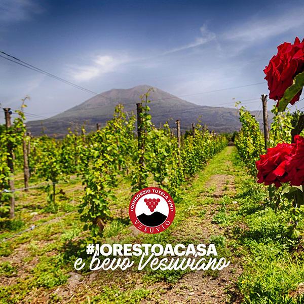 #iorestoacasa Consorzio Vesuvio