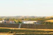 Ribera del Duero Reserva 2014 Pago de los Capellanes