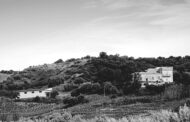 Baroni Capoano: sulle colline che dominano Cirò Marina