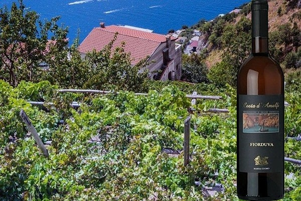 Costa d'Amalfi Furore Bianco Fiorduva 2016 di Marisa Cuomo
