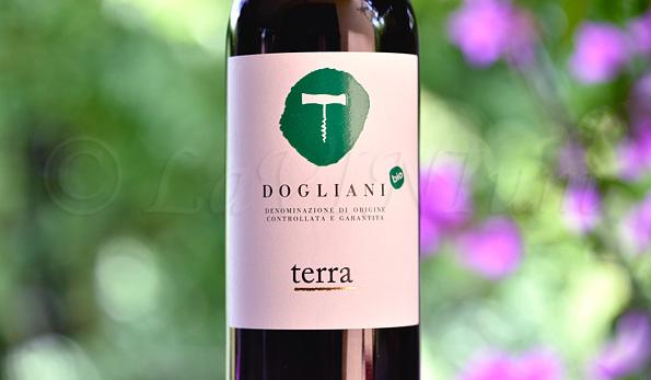 Dogliani Terra 2019 Cantina Clavesana