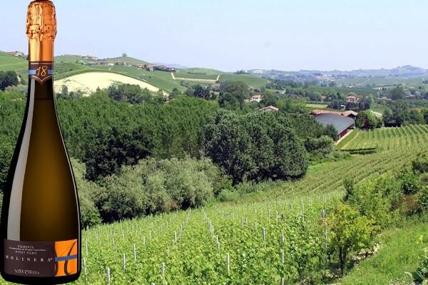 Piemonte Pinot Nero Extra Brut Molinera Vite Colte