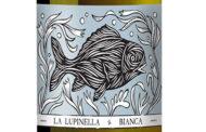 Lupinella Bianca 2018 La Lupinella