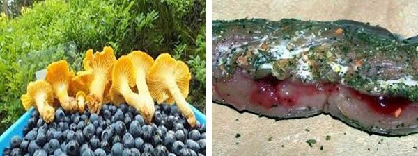 Medaglioni ai frutti di bosco con risotto ai funghi freschi