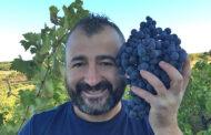 Dario Gungui della Cantina Pub Agricolo, il vignaiolo amico del vigneto