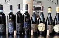 Terre di Leone e i vini di Marano