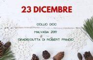 23 Dicembre in Friuli: Collio Malvasia 2019 Gradis'ciutta di Robert Princic