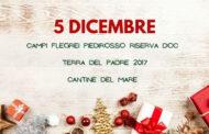 5 Dicembre in Campania: Campi Flegrei Piedirosso Terra del Padre Riserva 2017 Cantine del Mare
