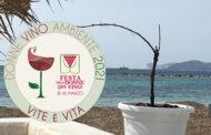 La vite simbolo di rinascita e sostenibilità per la Festa delle Donne del Vino