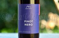 Alto Adige Pinot Nero Classic 2020 Erste+Neue