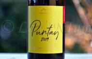Sauvignon Puntay 2019 Erste+Neue