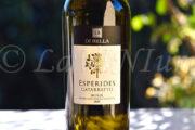 Sicilia Esperides Catarratto 2019 Di Bella: il ritmo del vino