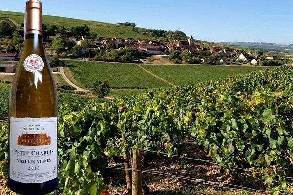 Petit Chablis Vieilles Vignes 2018 Domaine Dampt