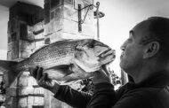 Mar Adriatico, litorale Flegreo e il valore della pesca
