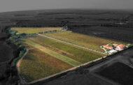 Campo alla Sughera, l'impegno della famiglia Knauf a Bolgheri