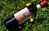 Cirò Rosso Classico Superiore Don Raffaele Riserva 2017 Baroni Capoano