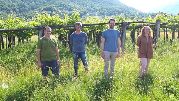 Produttori Valli Ossolane