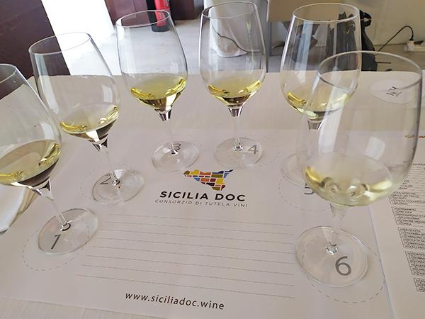 Degustazione vini bianchi Sicilia DOC