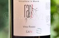 Rosso Raiz San (2020)